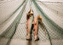 Сауна Свояк Зал Рыбалка фото